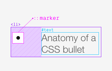 Showing the anatomy of a single list item by putting separate boxes around the bullet and the text