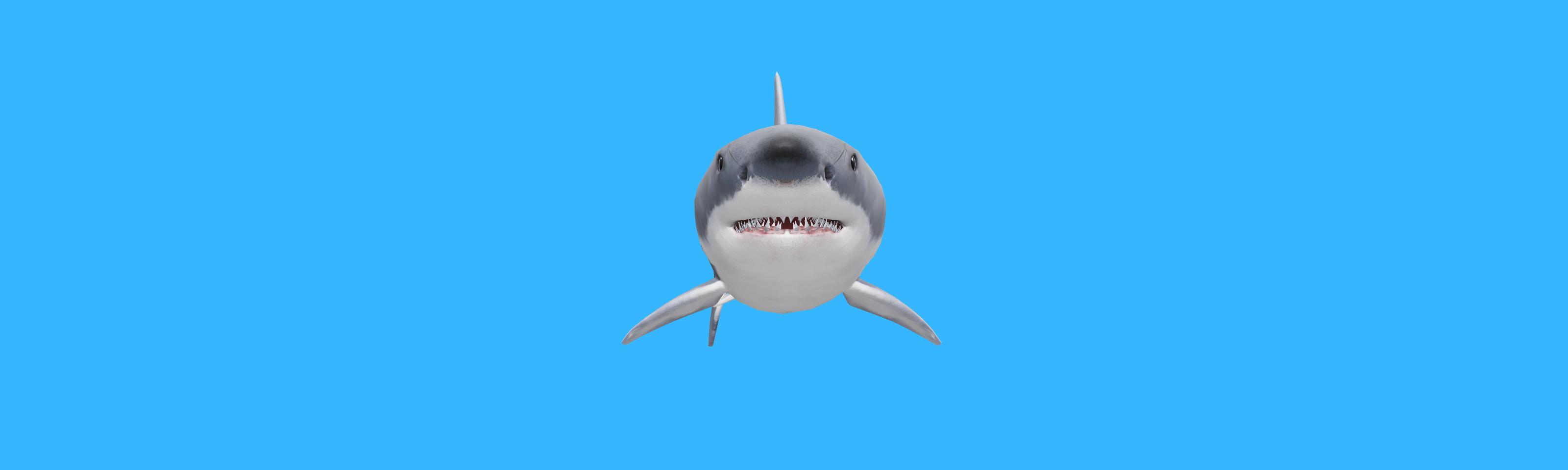A 3D image of a shark.
