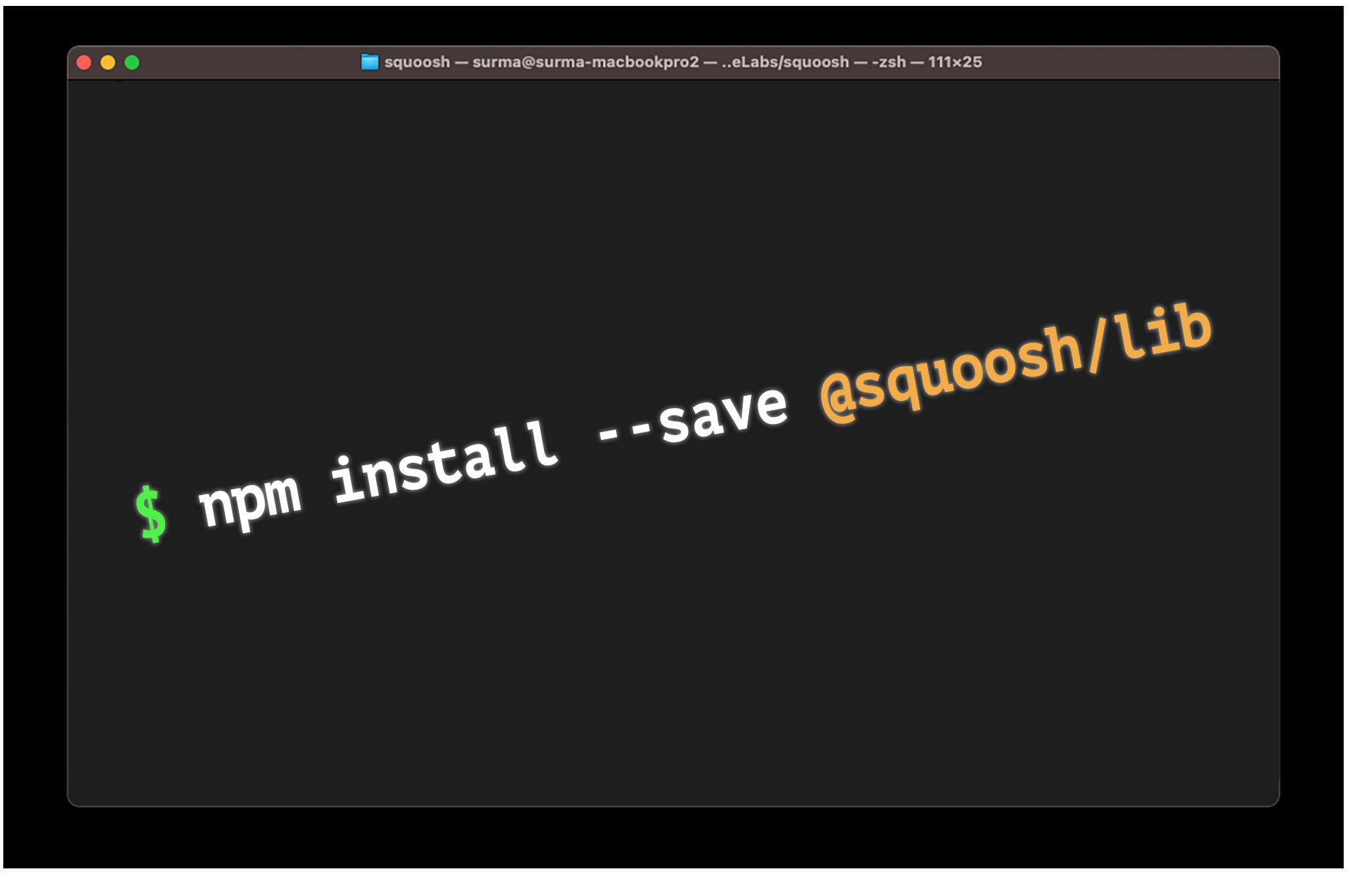$ npm install --save @squoosh/lib