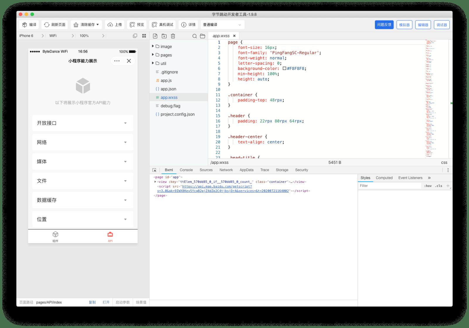 ByteDance DevTools application window showing simulator, code editor, and debugger.