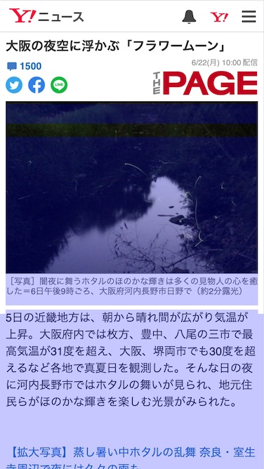 Article details page with blue rectangles overlayed on the hero image and the text.